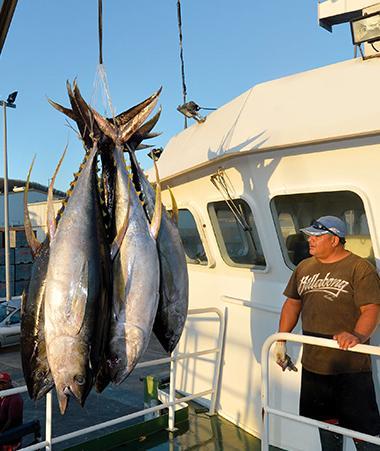 La gestion des ressources halieutiques fait partie des thématiques prioritaires, au même titre que la lutte contre le changement climatique ou les maladies endémiques.