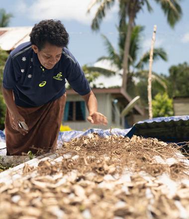 Dix-neuf pays et territoires du Pacifique sont éligibles à l'Initiative Kiwa, dont les trois collectivités françaises : Nouvelle-Calédonie, Polynésie française et Wallis-et-Futuna (© What Took You So Long | RESCCUE | SPC).